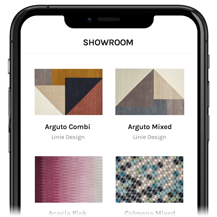Rug AR Showroom